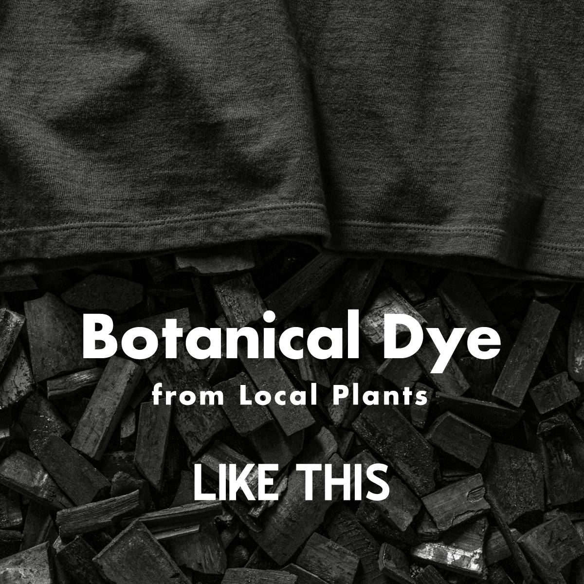 Botanical Dye